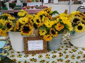 harris sunflowers July 4